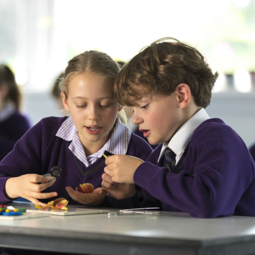 wycliffe prep students using magnifying glasses