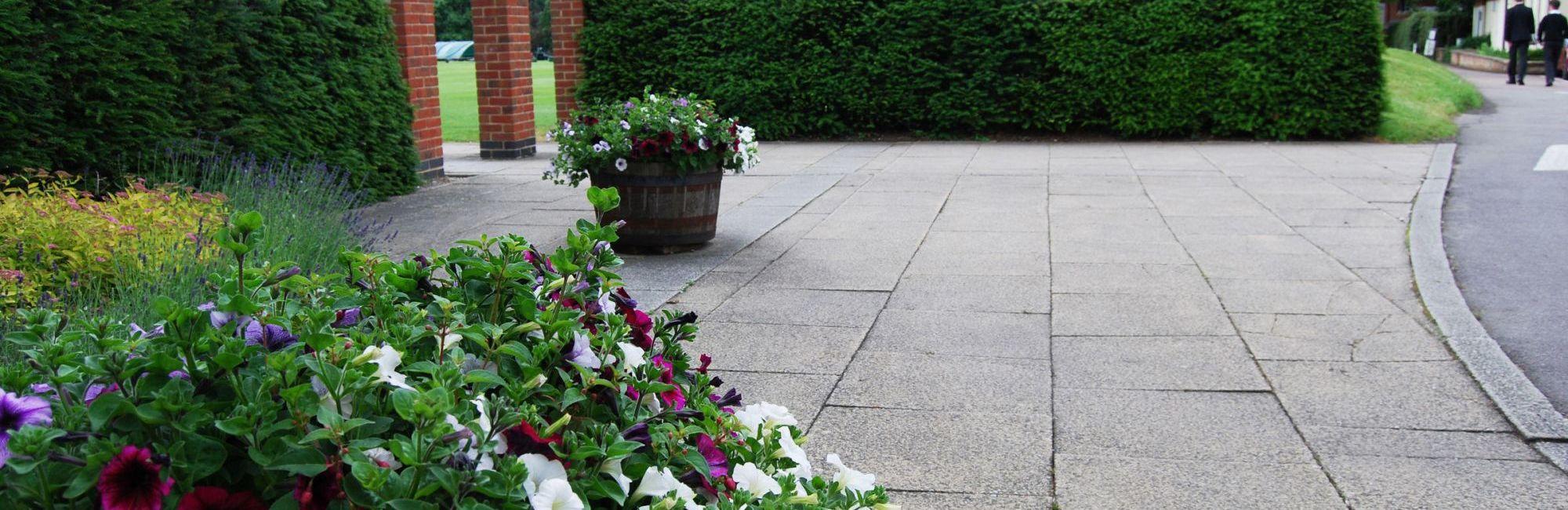 wycliffe garden with petunias